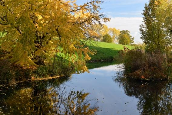 arboreto-batsford