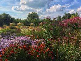 olanda vlinderhof